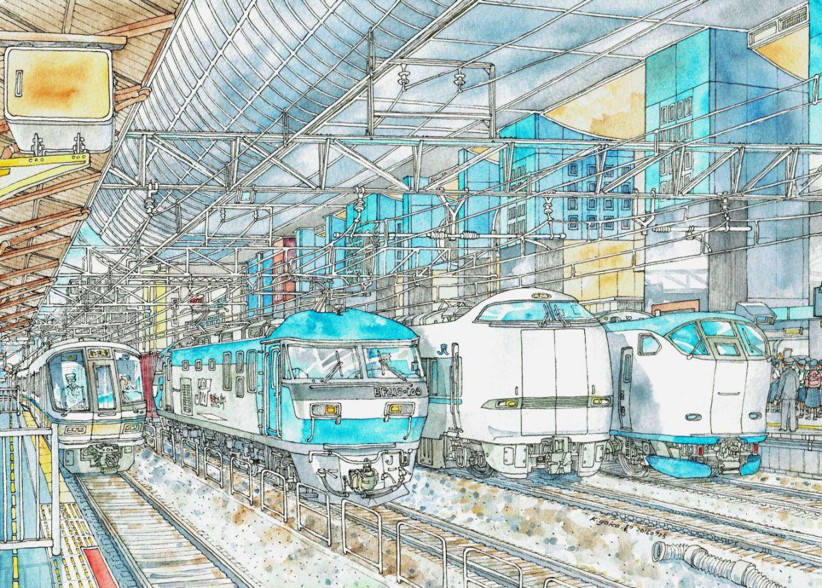 Kyoto Station – Series 221, Momotaro, Thunderbird, Haruka