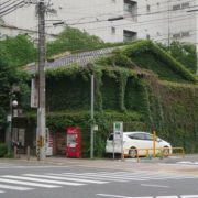 organic house in downtown kyoto