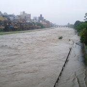 flood…
